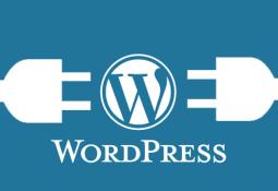 WordPress Page Yazısını Sayfa Olarak Değiştirmek