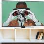 Smart TV Konuşmalarınızı Kaydedip Paylaşıyor