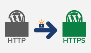 .htaccess ile SSL Yönlendirme (http to https)